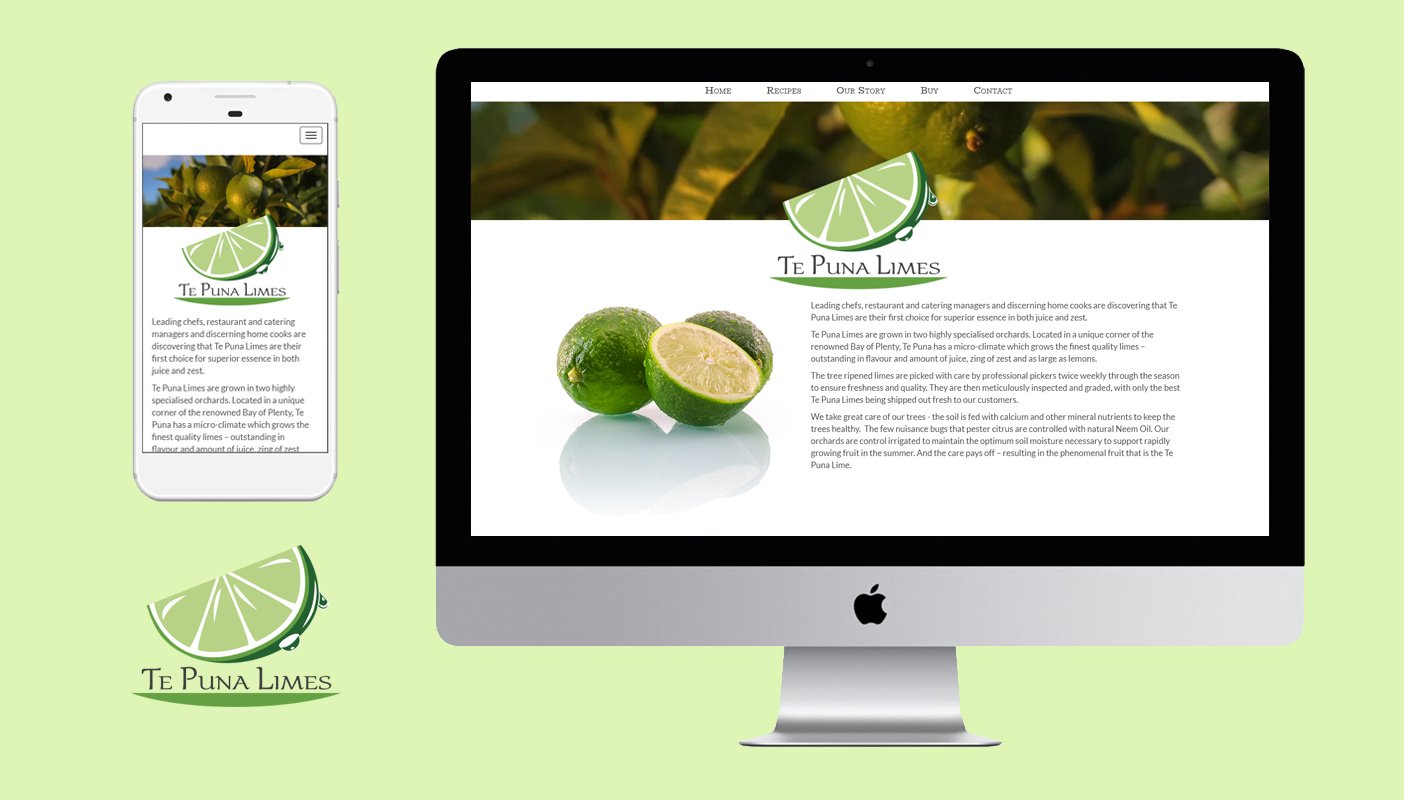Acre Technologies Website built a fully responsive SEO ready website for Te Puna Limes